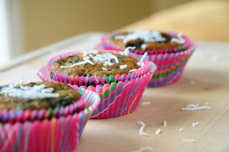 Blueberry Muffins | Young Paleo
